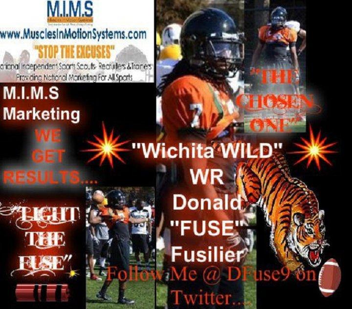 Fuse Wichita Wild
