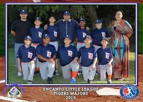 Major Tigers