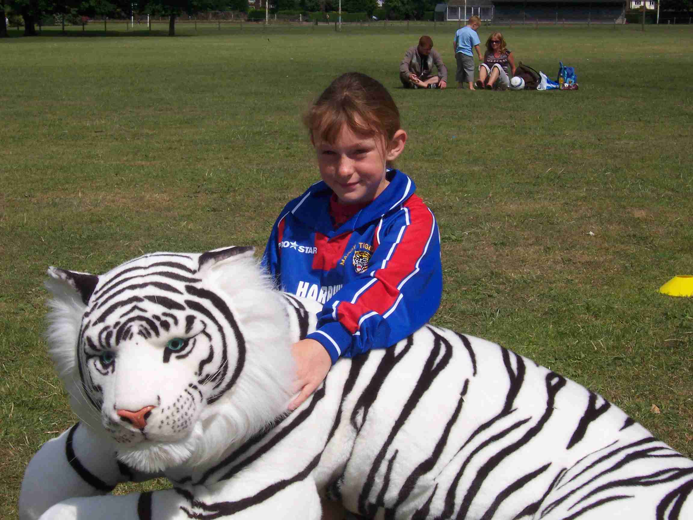 Spot The Tiger