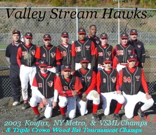 Hawks 2003