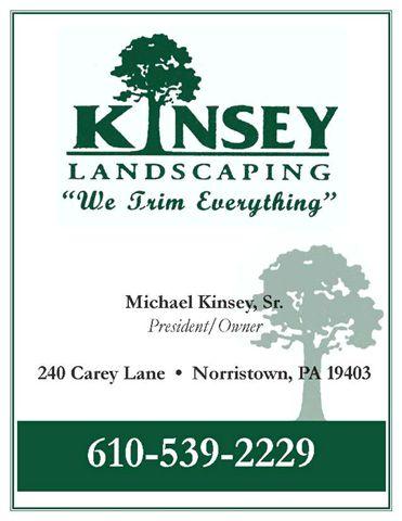Kindey ad