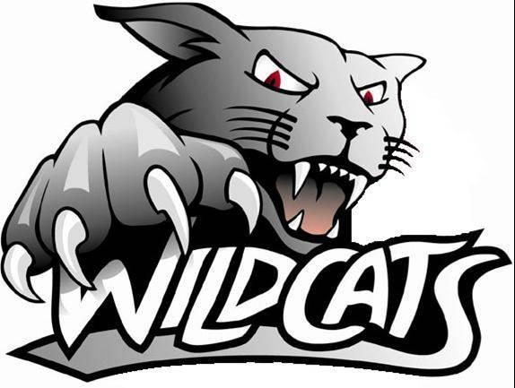 Merrimac Wildcats 18B