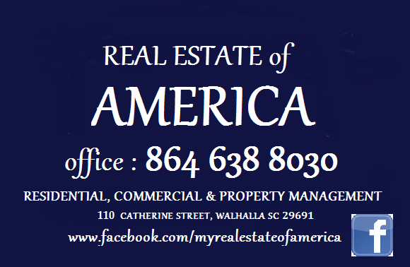Real Estate of America 2