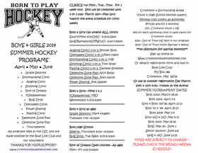 2014 Summer Hockey Programs Flyer
