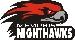 Memphis Nighthawk - Logo