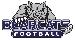 Bearcat Logo Blue