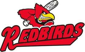 2014 redbird graphic