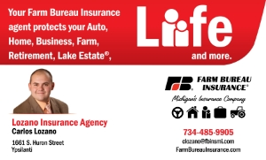 Lozano Insurance Agency Banner (2).jpg