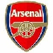 Arsenal Logo Shield