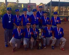 Undefeated 2016 Major Cubs