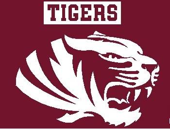 Tenth Ward Tigers