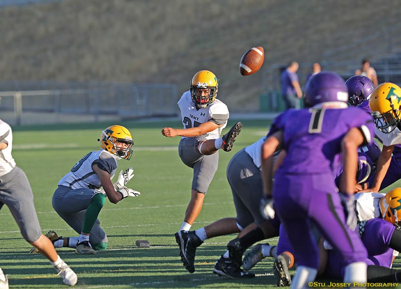 Barbosa Kick vs Tokay