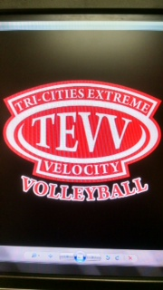 TEVV logo