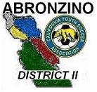 Abronzino