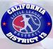 District 13 logo