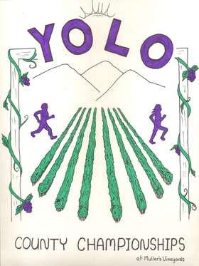 Yolo 2012 Art