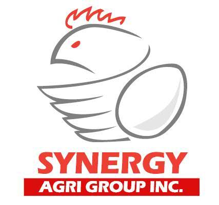 2013 Synergy