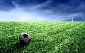 Soccer Ball 17