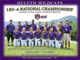 Duluth Wildcat Park Banner 2013-1.jpg