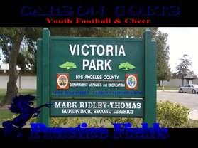 VictoriaParkPracticeFields-1.jpg