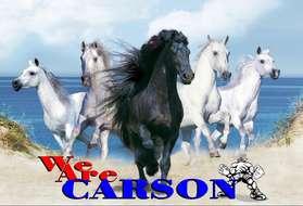 WeAreCarson515.jpg