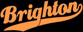 Summer Team Logo