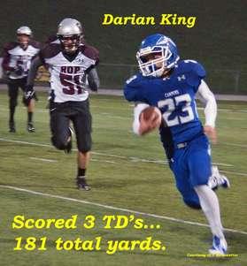 D King 3 tds Silver Oak 15