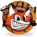 SYBA Logo