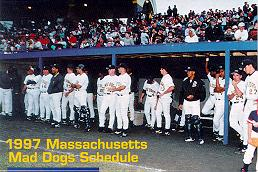 mad dogs pic
