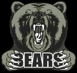 BearHead250