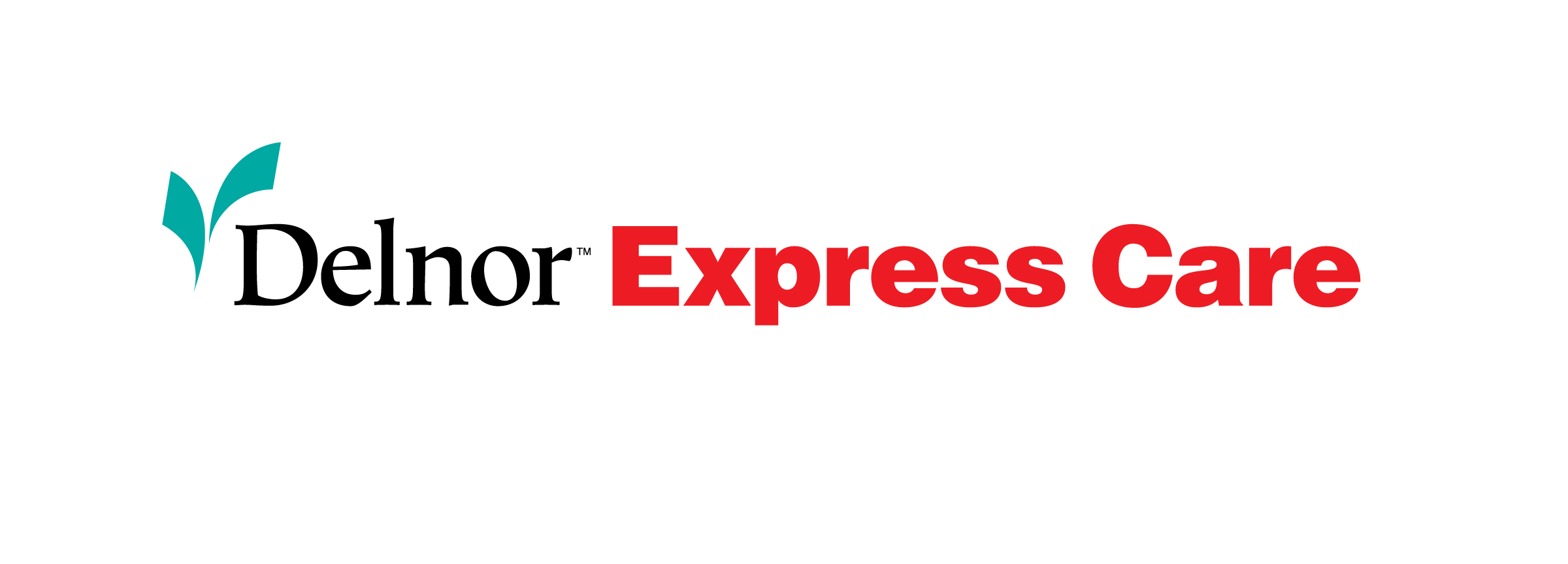 delnor express care