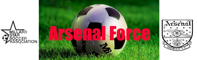 Arsenal Force