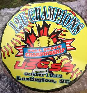2013 USSSA Fall State Champs!!