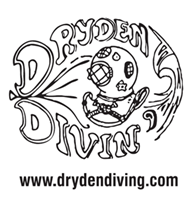 dryden diving