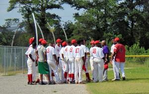 Cardinals Champions