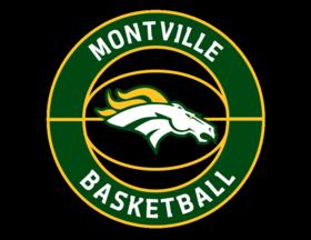 basketball primary logo