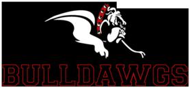 Bulldawg 500