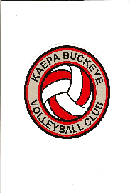 Buckeye Volleyball Decal