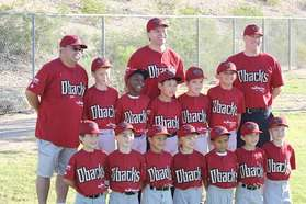 Fall 2013 Pinto Diamondbacks.jpg