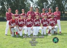 Old Pro 2015