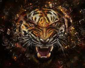 shattered-tiger-wallpaper.jpg