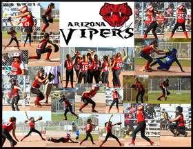 Viper Collage