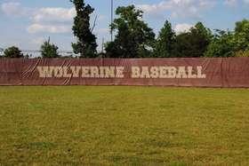 Wolverine Baseball
