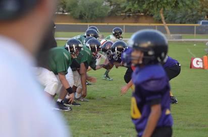 2014 Lions vs Cougars D2 lines