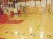 Falcon Court #50