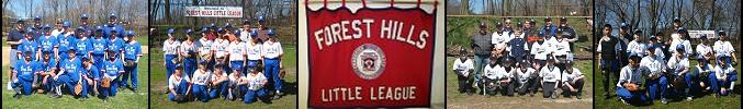Forest Hills Baseball