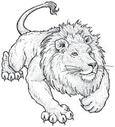lioneil