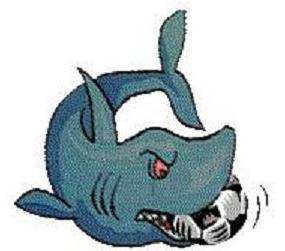 Mantua Sharks