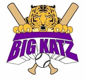 Pickerington '93 Baseball Big Katz (aka Pythons/Tigers)