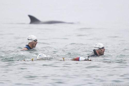 Santa Barbara Triathlon 2016 - Santa Barbara, CA 2016   ACTIVE